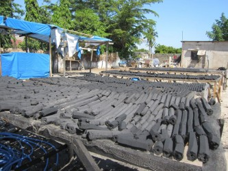 Drying the freshly produced non-wood charcoal briquettes