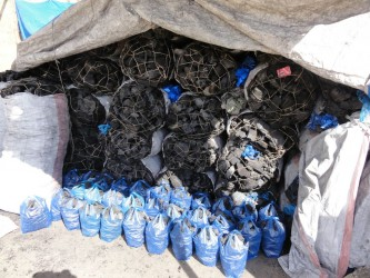 Non-wood charcoal briquettes in their various sized packages