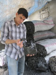 MIT's Ali Kamil investigate ARTI's  sustainable, non-wood charcoal product